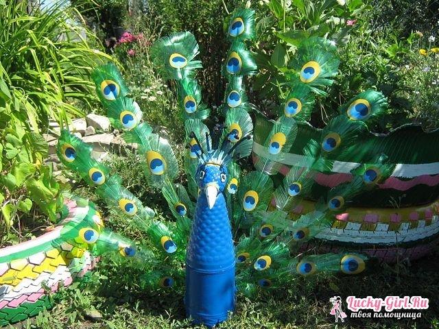 Bir şişe Tavuskuşu Nasıl Yapılır Plastik şişelerden Tavus Kuşu