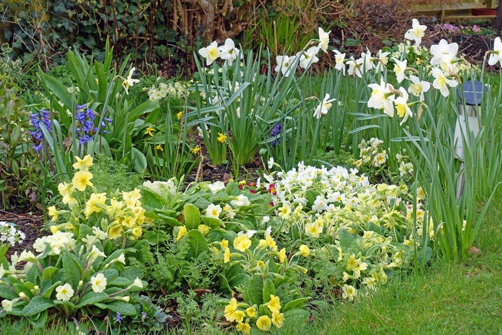 Магазин, весенний букет сад палисадник